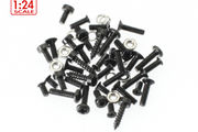 Screw and nut assortment